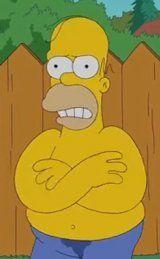 """""""Ice Bucket Challenge"""": Homer Simpson mit dabei"""