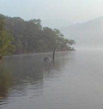 """Ungeheuer von Loch Ness nach England """"ausgewandert""""?"""