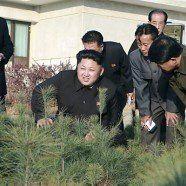 UNO will Regime in Nordkorea vor IStGH bringen