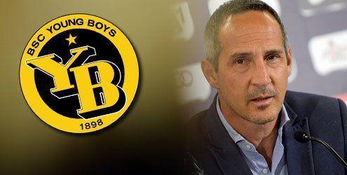 Verhandlungen: Wird Adi Hütter neuer Trainer der Young Boys?