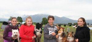 Hundesportler trotzten dem Wetter