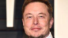 Tesla-Chef will Gehirne mit Computern vernetzen