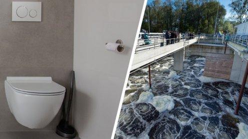 Ländle-Kläranlagen klagen über Feuchttücher in der Toilette