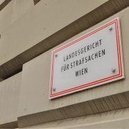 Vergewaltigungsversuch beim Donauinselfest: Angeklagter aus Haft entlassen
