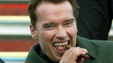 Schwarzenegger spielte auf größter Domorgel