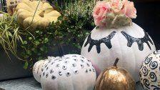 Der BayWa-Gartentipp: Herbstdeko aus Kürbissen